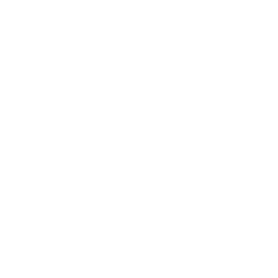 BanditsDanceStudio_Logo_neg